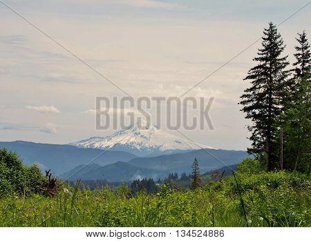Mt. Hood, Oregon, scenic view of mountain