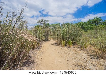 Hiking Trail In Desert