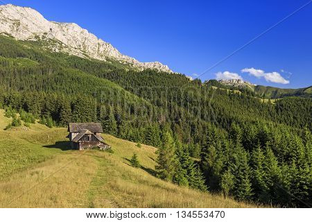 Alpine landscape in Romanian mountains with forests and meadows.
