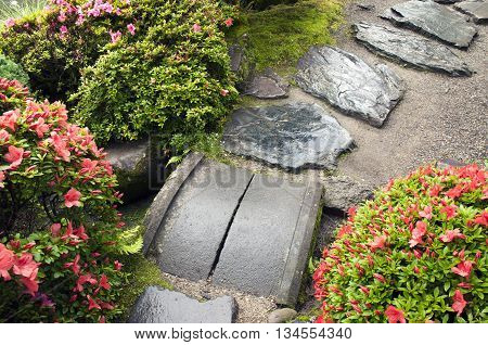 wet stone steps among fresh blossom azalea bushes in Japanese zen garden