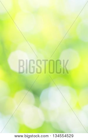 Abstract summer background with blurred yellow white and green spots