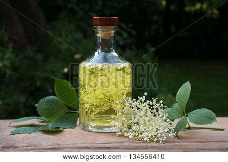 Homemade elderflower drink with sugar and lemon in a glass bottle on a wooden table in the garden syrup for refreshing juice and champagne in summer copyspace selective focus