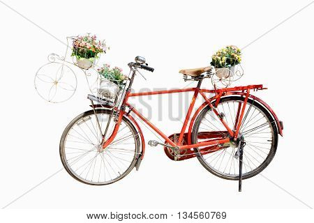 Old red bicycle with flower in basket isolated on white background