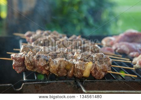 Tasty skewers on the grill, close-up. grilling