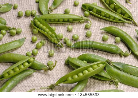 Scattered pods peas and green peas on a canvas cloth