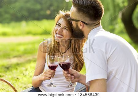 Couple in love sitting on a picnic blanket in a park holding glasses of wine and making a toast