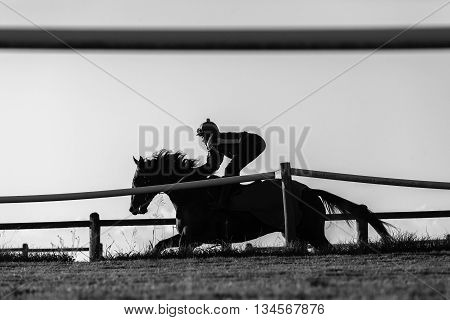 Race horse rider jockey training track action morning silhouetted black white landscape.