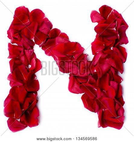 Alphabet N Made From Red Rose
