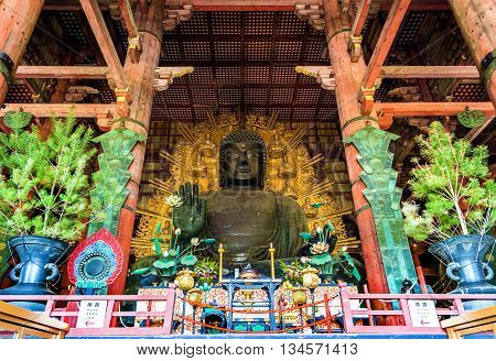 Daibutsu, Giant Buddha statue in Todai-ji temple - Nara, Japan