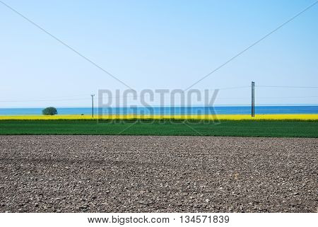 Colorful rural spring landscape at the swedish island Oland