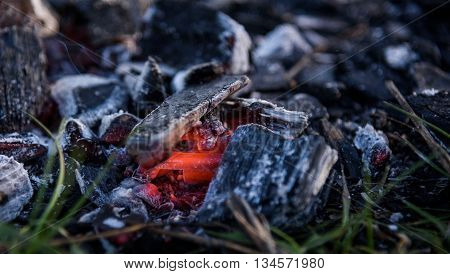 Texture Embers After Fire. Closeup