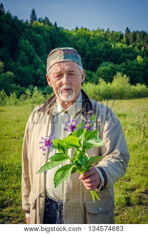 Romantic senior gentleman extends a cornflower bouquet and looking at camera. Elderly man holding wildflowers in the meadow.