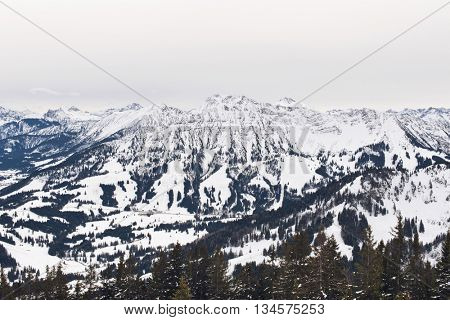 Spread out evergreen trees covering parts of mountains and snow under gray skies