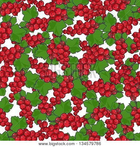 Seamless Redcurrant Patternб Fruit Berry Patternб Vector Illustration