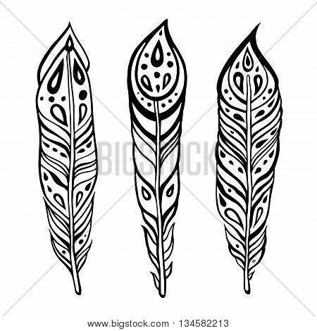 Vintage tribal Feathers. Hand drawn Vector illustration