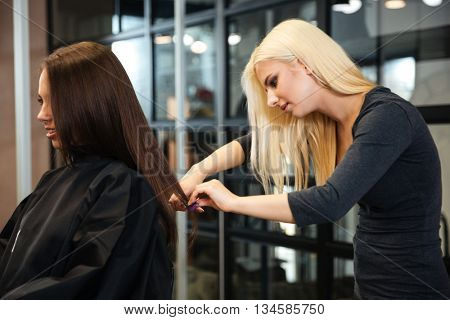 Young female hairstylist doing a haircut to a client in beauty salon