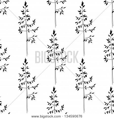 Seamless herbal pattern. Black and white. Vector illustration. Floral background
