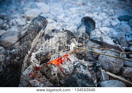 Marshmallows sticked on a twig being toasted on a self-made campfire family spending quality time on an adventurous camping trip. Active natural lifestyle fun family time concept.
