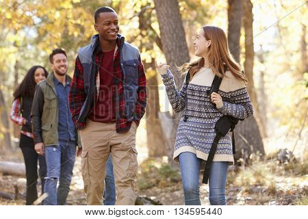 Four friends talking as they hike through a forest