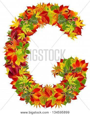 G autumn alphabet isolated on white background