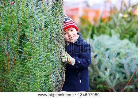 Beautiful little smiling kid boy shopping for christmas tree. Happy child in winter clothes, hat, gloves choosing xmas tree in outdoor shop. Family, tradition, celebration concept