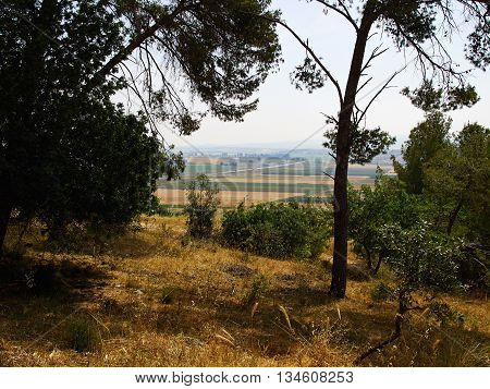 Valley of Jezreel Israel the famous area where Jesus used to live