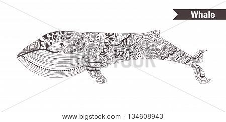 Whale. coloring book for adult, antistress coloring pages. Hand drawn vector isolated illustration on white background. Henna mehendi, tattoo sketch