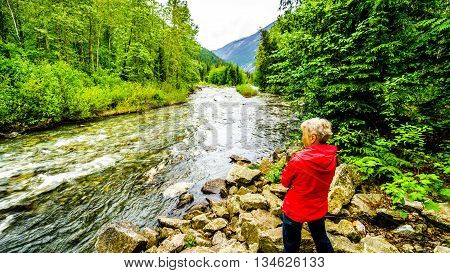 Senior Woman enjoying the View of Cayoosh Creek at the Cottonwood Campside along the Duffy Lake Road near Lillooet in British Columbia