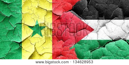Senegal flag with Palestine flag on a grunge cracked wall