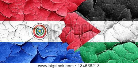Paraguay flag with Palestine flag on a grunge cracked wall