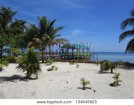 Tropical Caye Caulker Island Pier in Belize