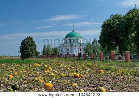An ancient church of St. Nicholas (1797) in the urban settlement Dikanka Ukraine and a pumpkin field