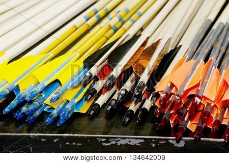 Colorful Sport Arrows In A Row