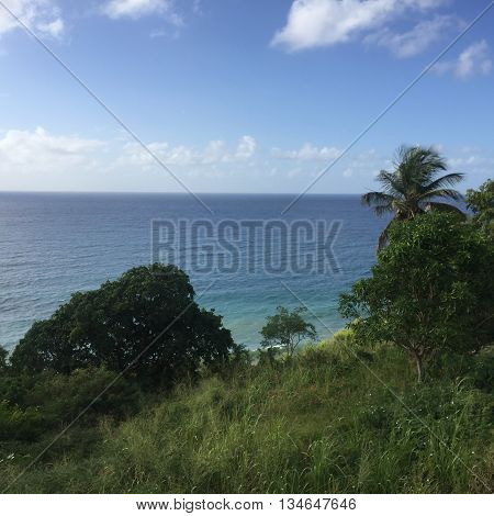 Tropical Caribbean Island Overview in St. Kitts