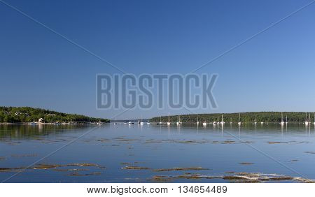 View of sailboats in the harbor at Stockton Springs Maine in the late spring with Sears Island in the background.