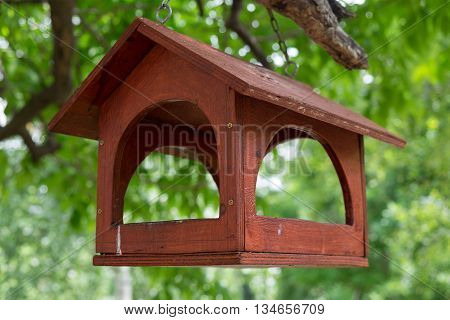 Images of red bird feeder hanging on the tree