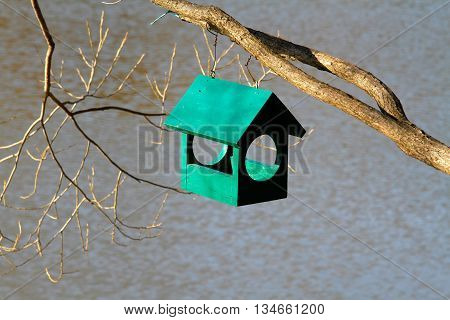 Green wooden birdhouse hanging on tree branch outdoors