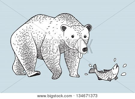 Vector bear would like to eat fish