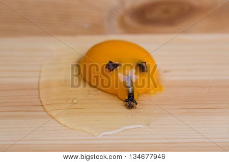 Broken egg decorated with cloves as snout on wooden background