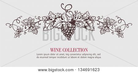 Wine grapes wreath template design. Vector illustration. Sketch style design. Red wine, white wine. Handdrawn grapes.
