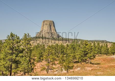 Devils Tower stands above the surrounding area in northwestern Wyoming