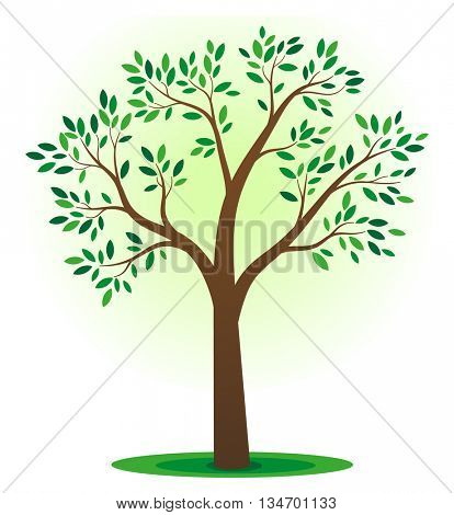 Simple tree illustration with green leafs
