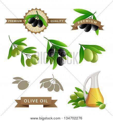 Olives food and oil vector set illustration