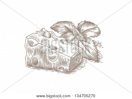 Drawing of piece of cheese with purple basil