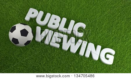 High Angle View of Soccer Ball on Fresh Green Grass with the Words Public Viewing in Soccer Sports Concept Image. 3d Rendering.