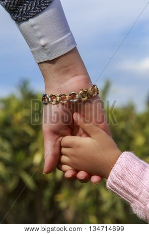 Mother and little girl's hands in garden with blue sky