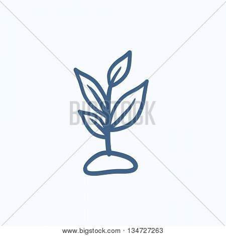 Sprout vector sketch icon isolated on background. Hand drawn Sprout icon. Sprout sketch icon for infographic, website or app.
