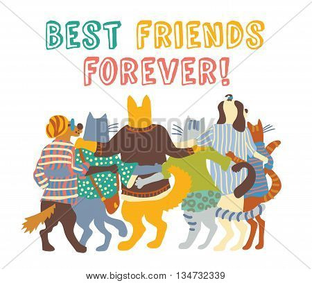 Cats and dogs pets group friends hugs isolate. Color vector illustration. EPS8