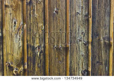 Picture from weathered wood in detail. Outdoor Shot.