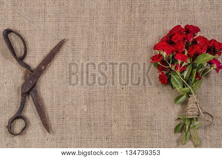 Bouquet Of Red Roses And Old Rusty Scissors On Jute Background